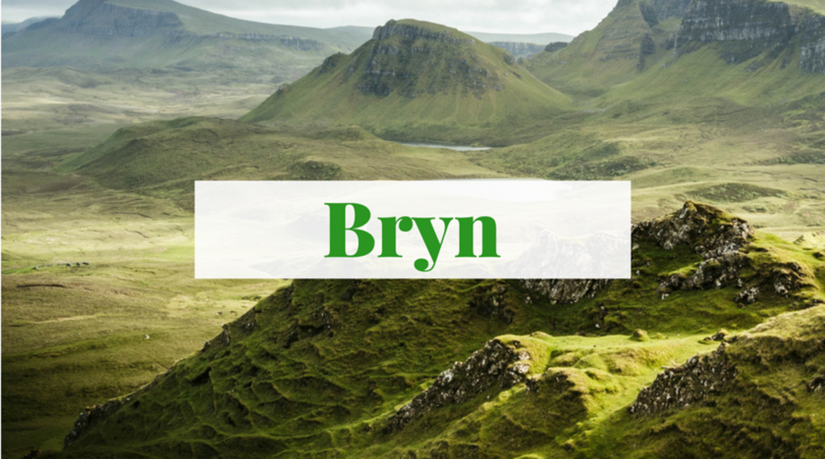 """Bryn is a beautiful name that means """"hill"""" in Welsh."""