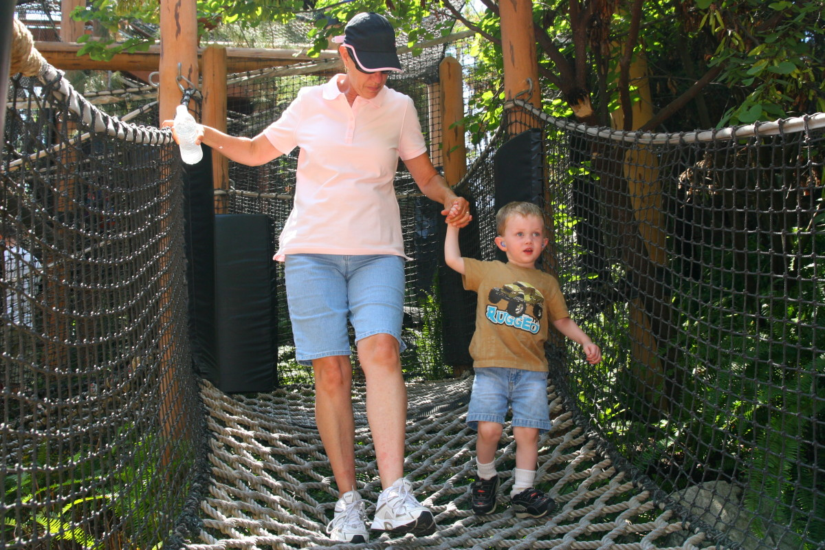 The Redwood Creek Challenge Trail offers various climbing and sliding opportunities for toddlers and preschoolers.