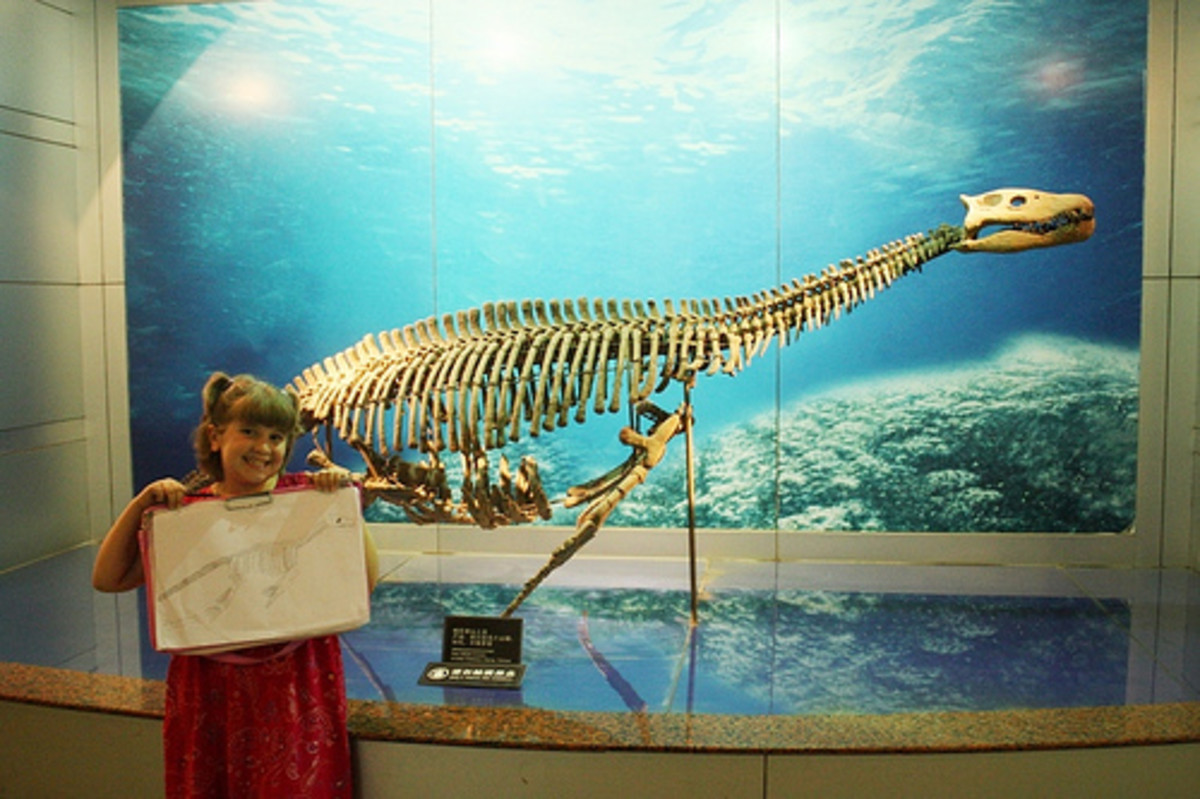 Holding a plesiosaur sketch at the dinosaur museum.