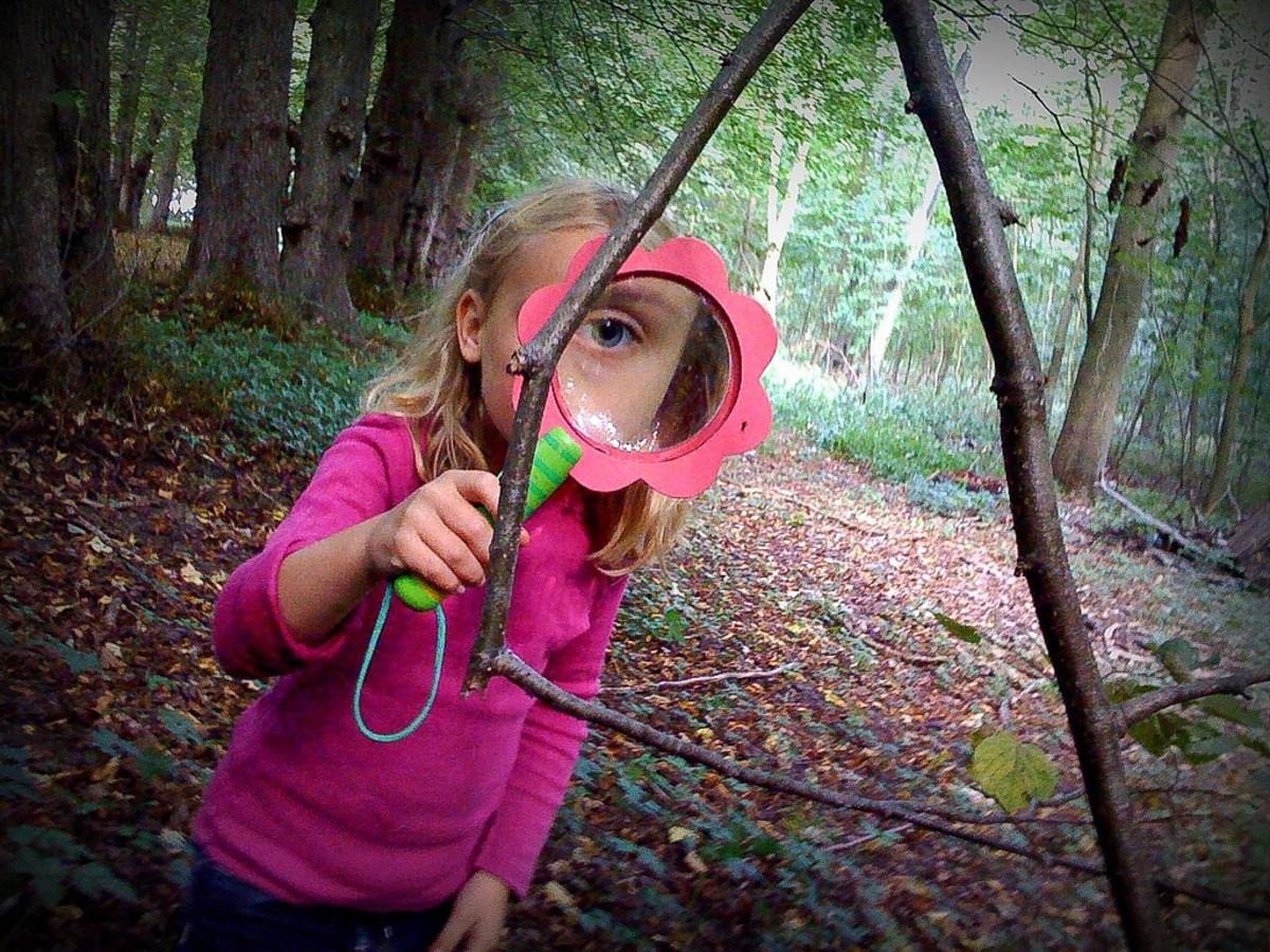 A magnifying glass opens up a whole new world for nature enthusiasts.
