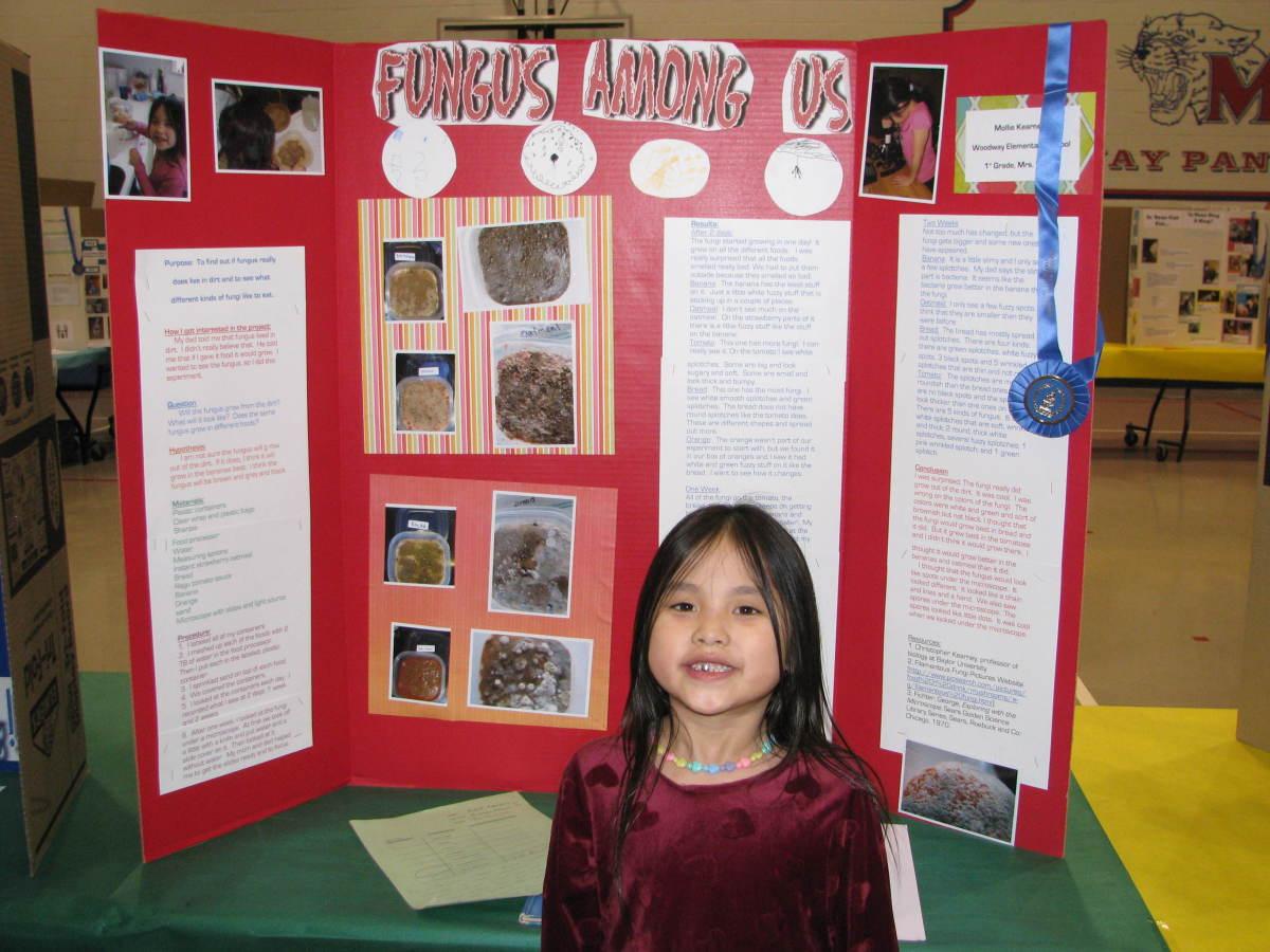Microbes Science Fair Board