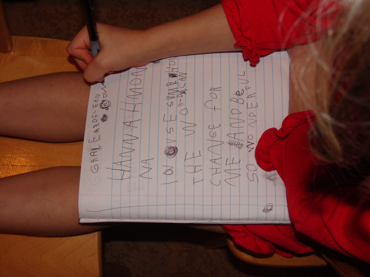 Examples of writing in her notebook.