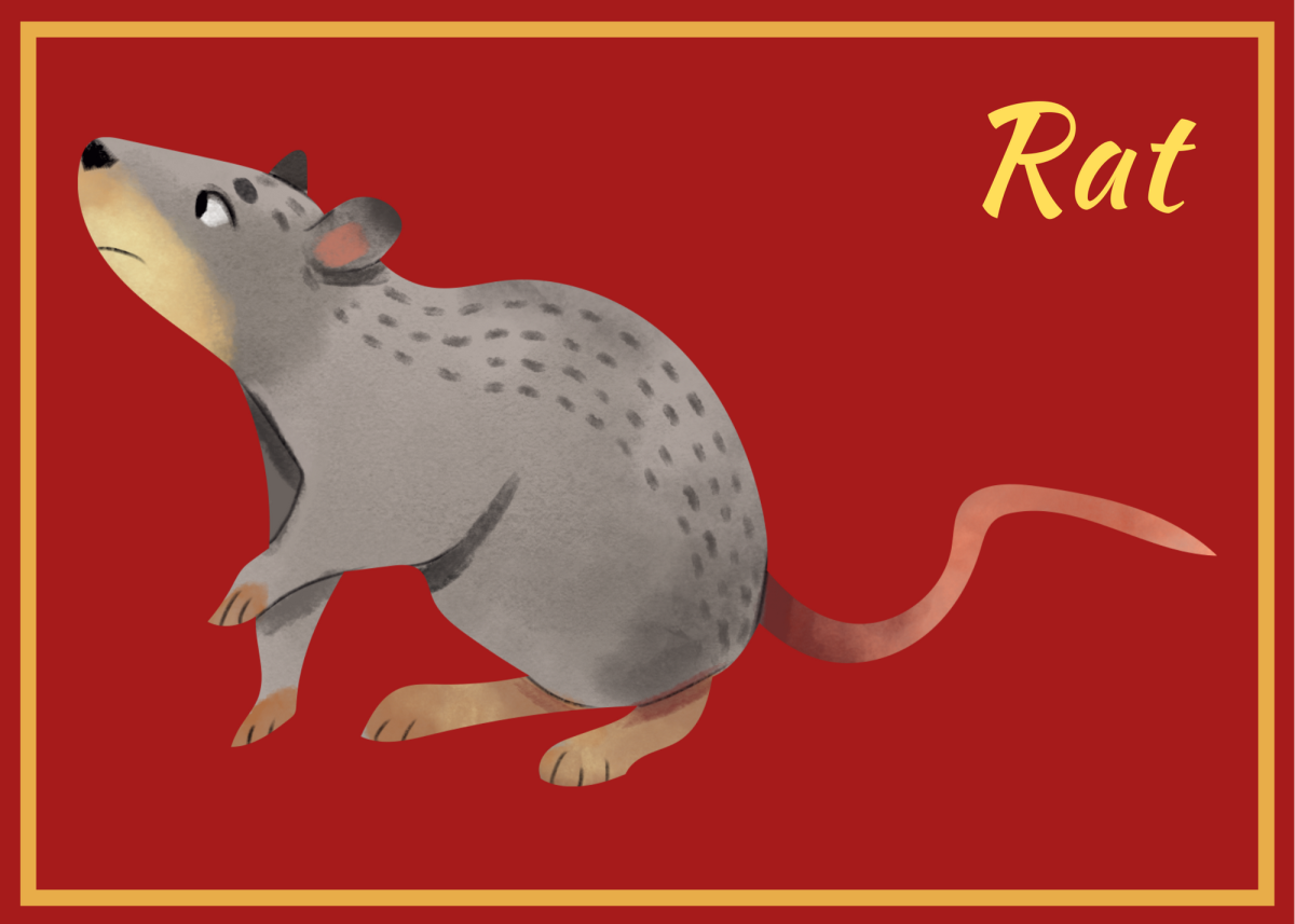 The Rat reached the finish line first . . .