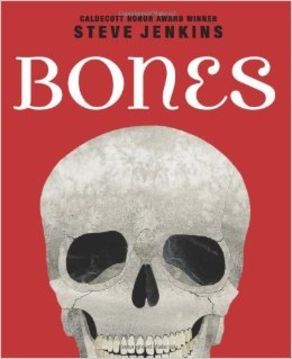 Bones: Skeletons and How They Work by Steve Jenkins