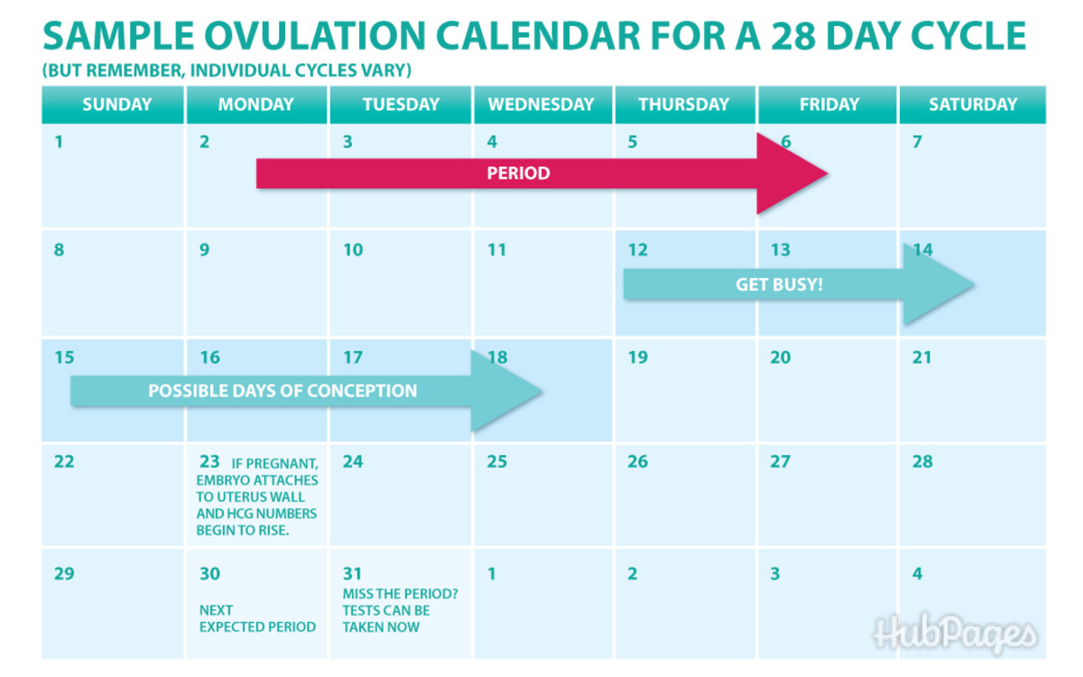 # Can You Get Pregnant A Day Before You Ovulate - How To