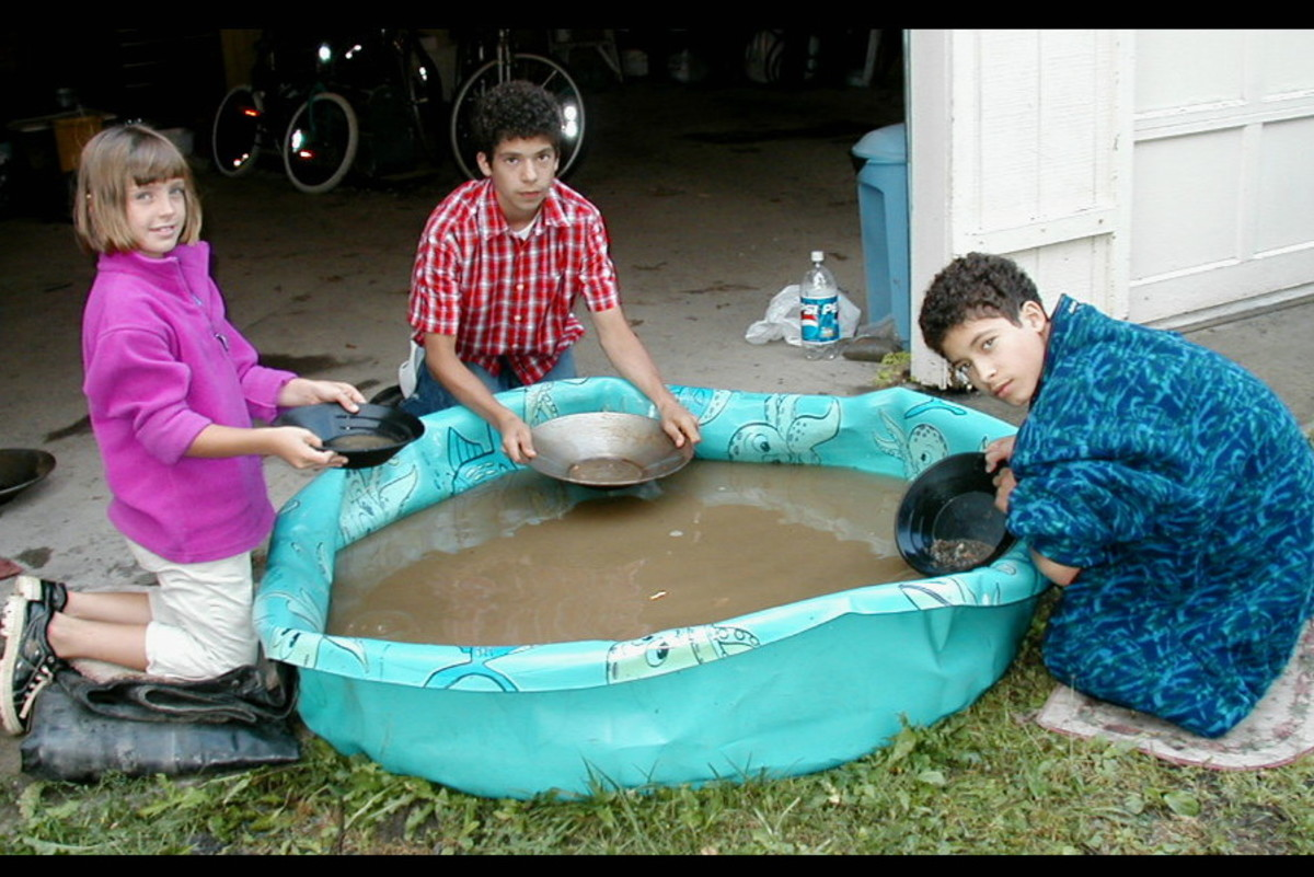 A bucket of gravel and sand from an old gold mining area was dumped into the kiddie pool. The grandchildren (ages 6-12) loved gold panning! Yeah, water and dirt!