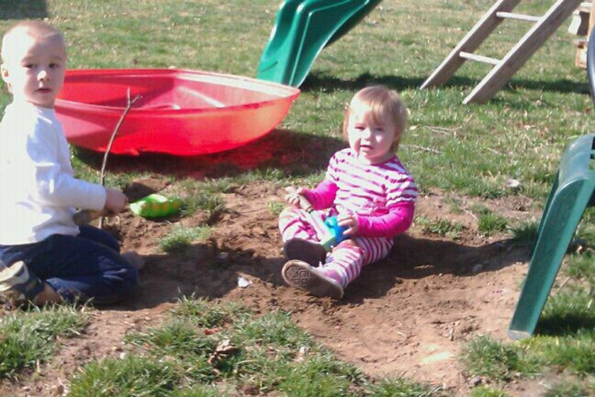 Teaching toddlers to work and play nicely together  is a lifelong lesson.