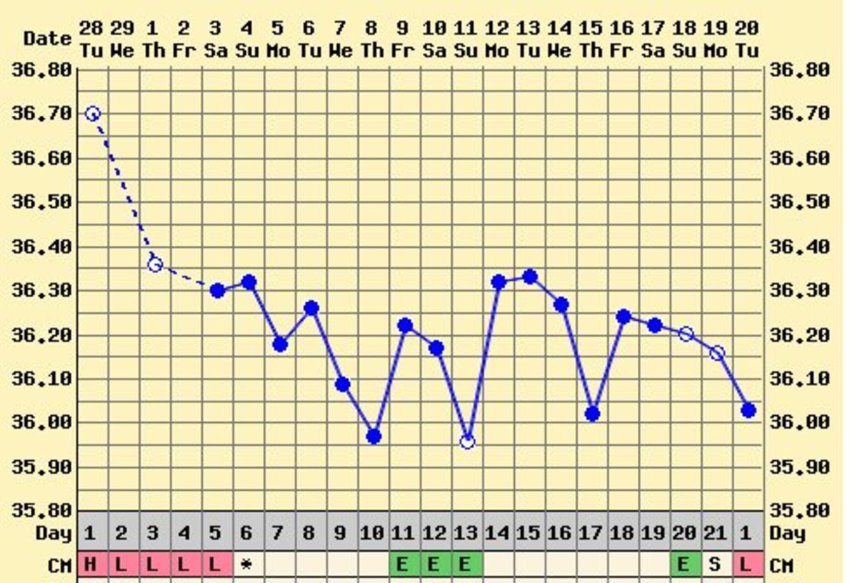 This is my chart for the 3 weeks after my miscarriage - although I had EWCM, I did not ovulate and my period came 3 weeks after the miscarriage.