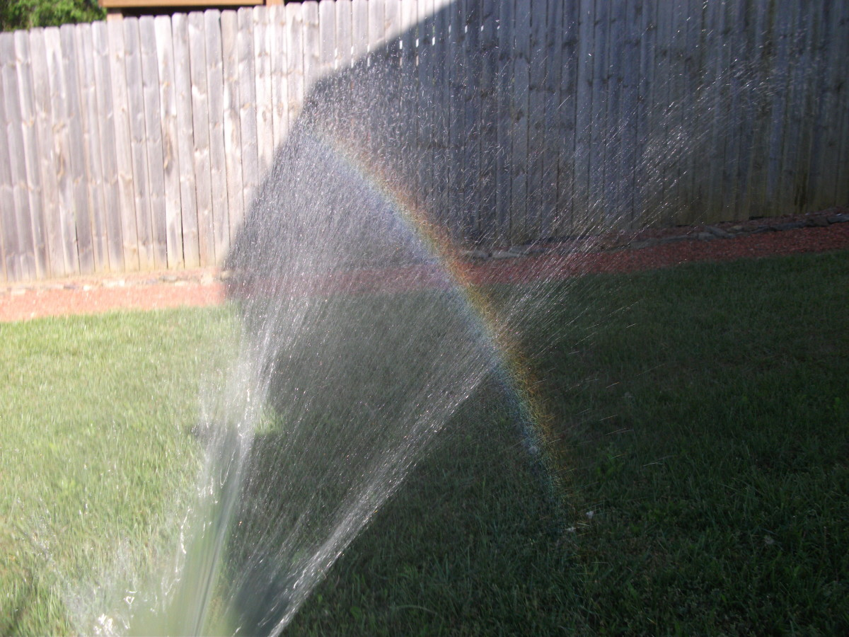 The rainbow shows up best in the shadowed area.