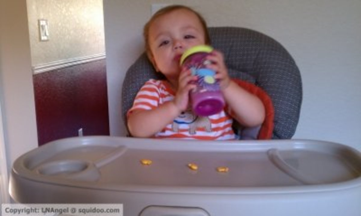 Success! Bottle to Sippy Cup (Rimmed) Transition in About 3 Weeks