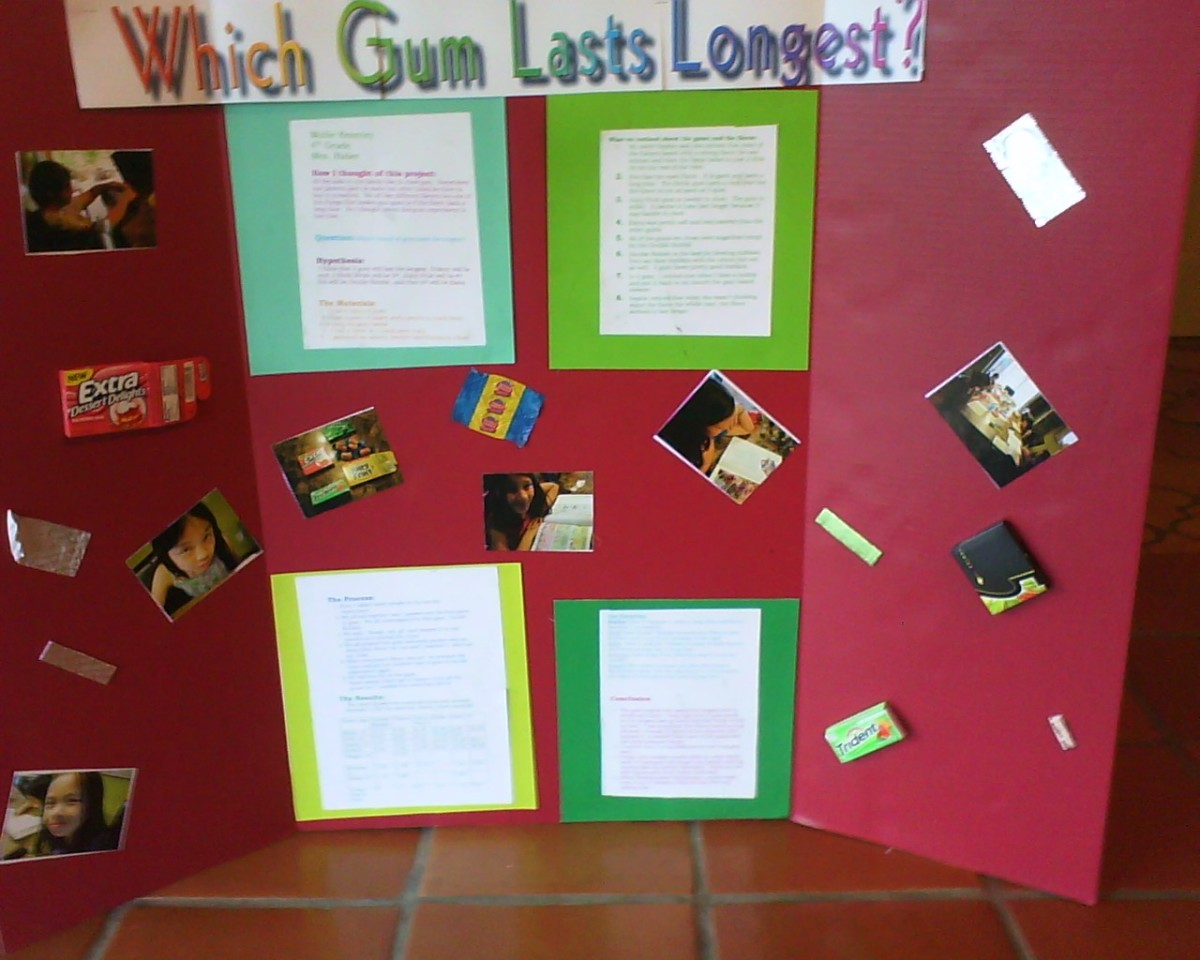 4th grade science fair board which gum lasts the longest