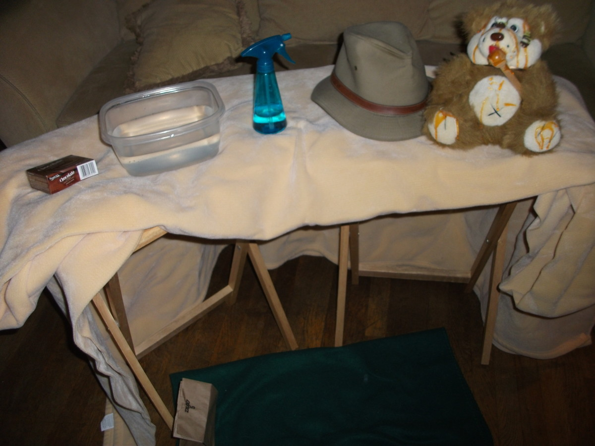 Props for the story - a bear, safari hat, water for the river, chocolate pudding for mud, a cave made of furniture with a blanket over it, and a spray bottle for the snowstorm.  Don't forget the picnic lunch.