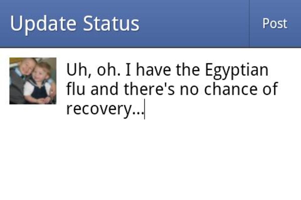 Pregnancy status update