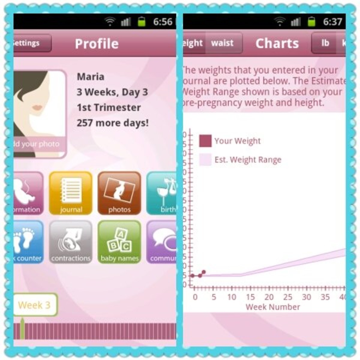 Screen shot of Baby Bump Pro pregnancy app for Android