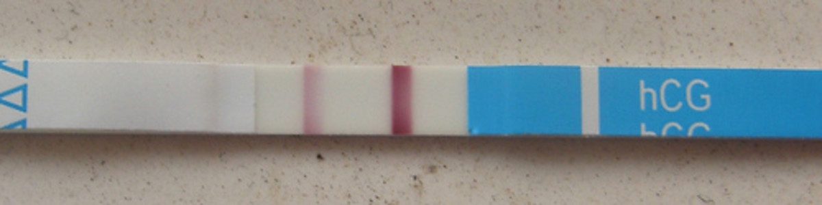 Strip pregnancy tests may be purchased online and are a twentieth of the cost of the cartridge versions.