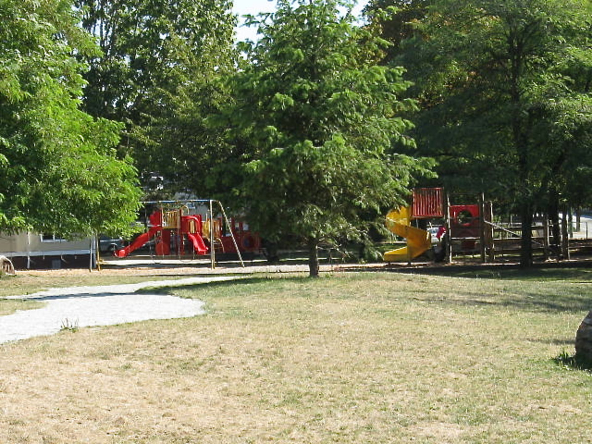 This school playground has a natural play area and a traditional play area, but even the traditional play area is surrounded by trees.