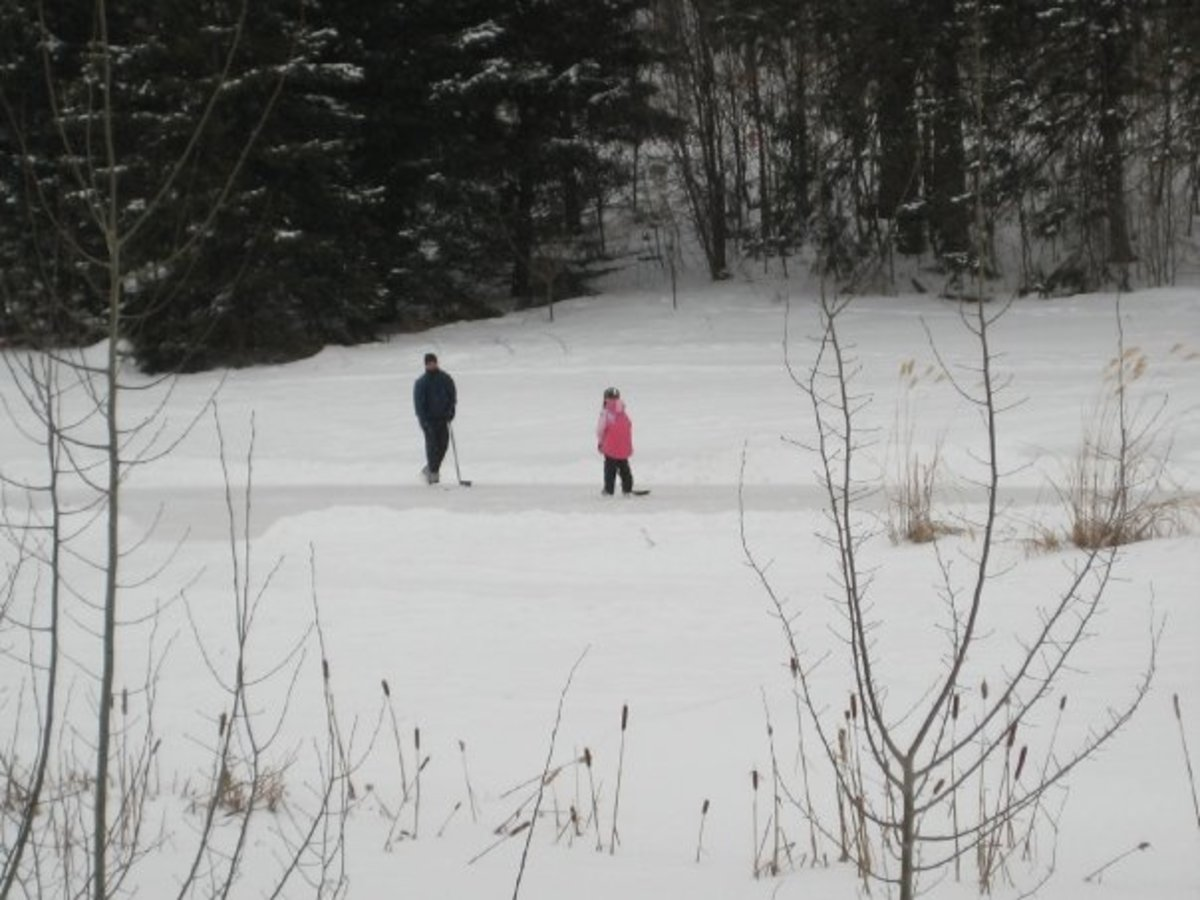 Father-daughter hockey on the pond.