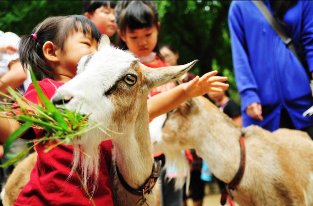 Children can be taught about the needs of farm animals as well.