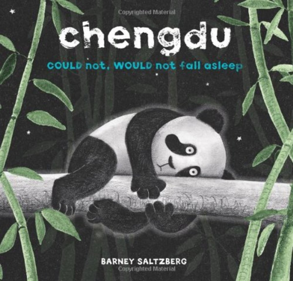 Chengdu Could Not, Would Not, Fall Asleep by Barney Salzberg