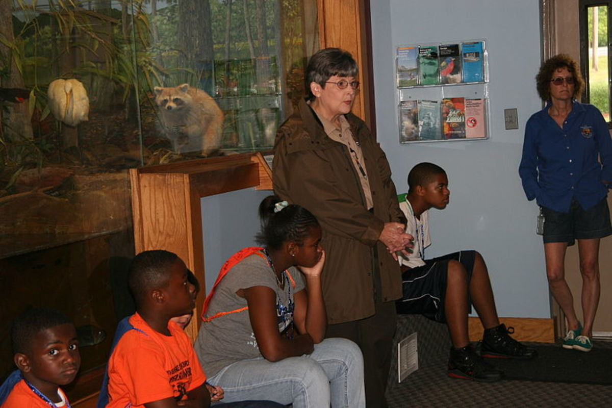 Park rangers can often prepare special programs for groups of kids and teens.