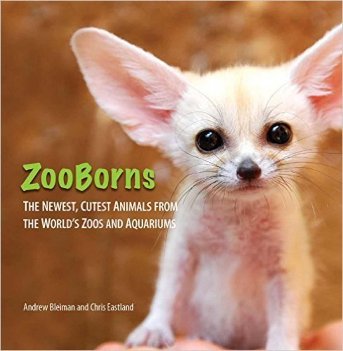 Zooborns   --  Books for Reluctant Readers: Girls Who Don't Like to Read