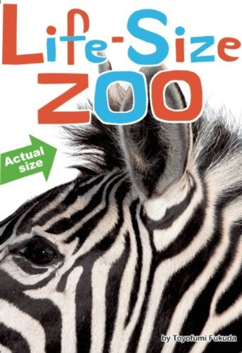 Life Size Zoo --  Books for Reluctant Readers: Girls Who Don't Like to Read