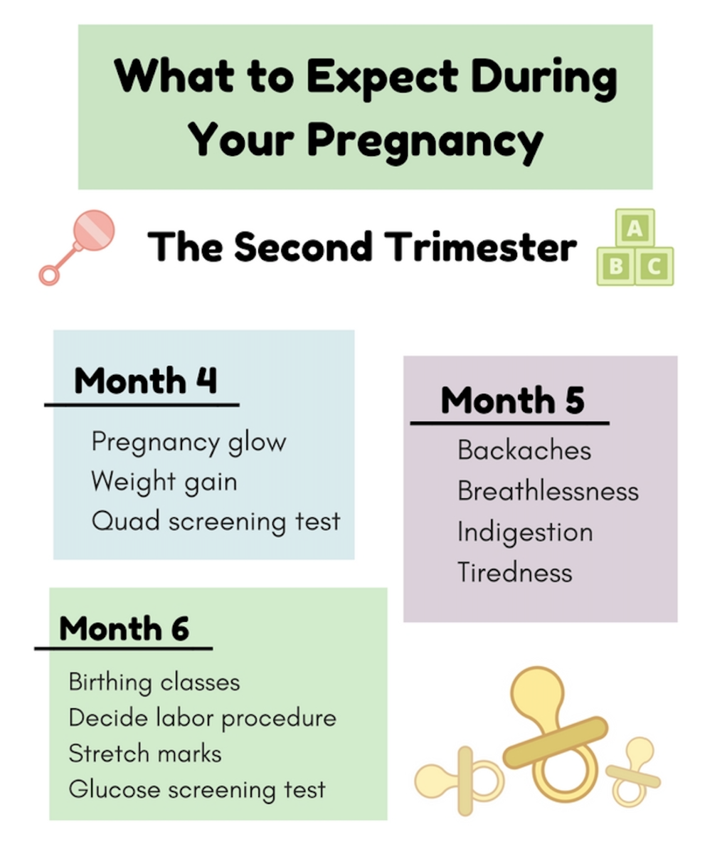 What to Expect During Your Pregnancy During the Second Trimester