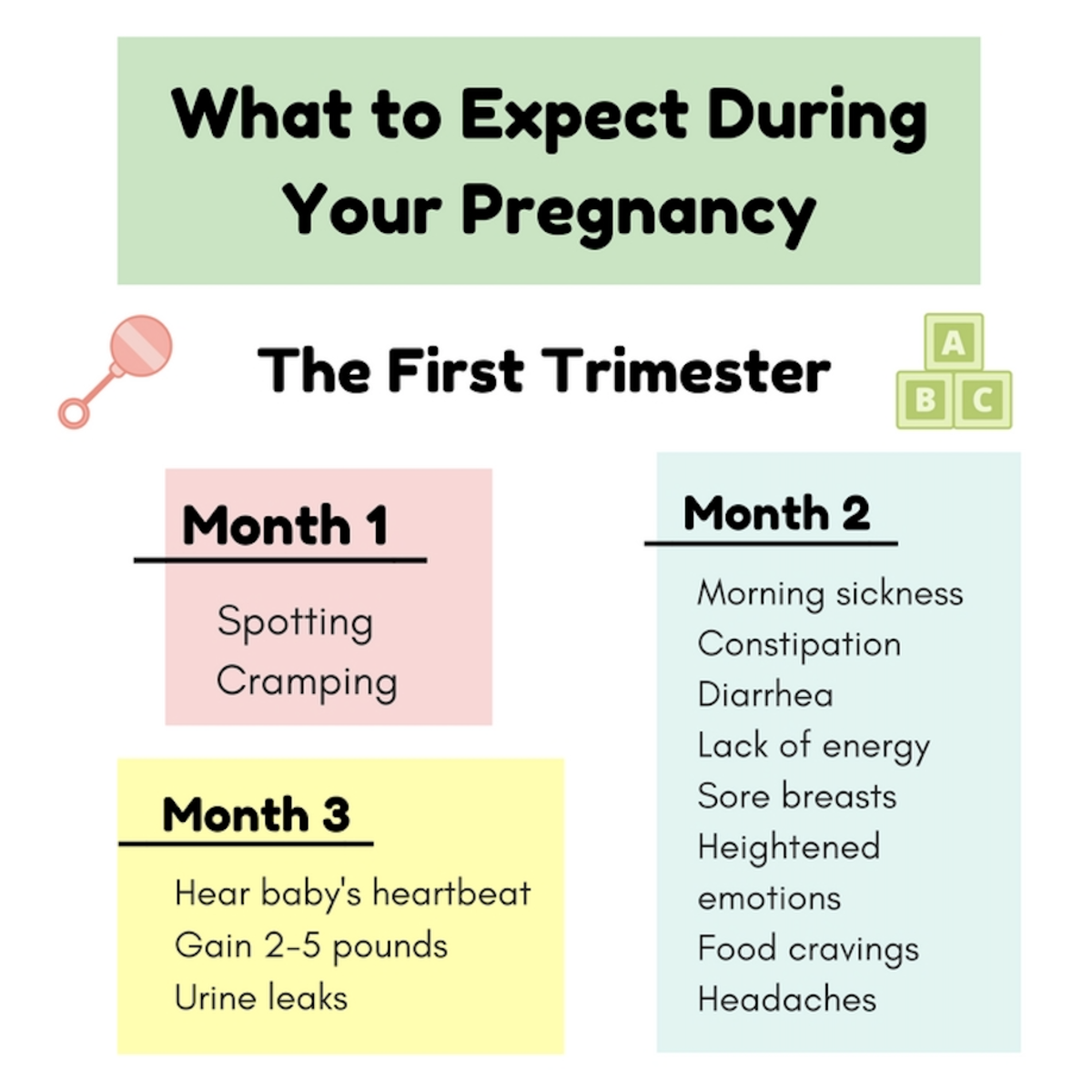 What to Expect During Your Pregnancy During the First Trimester