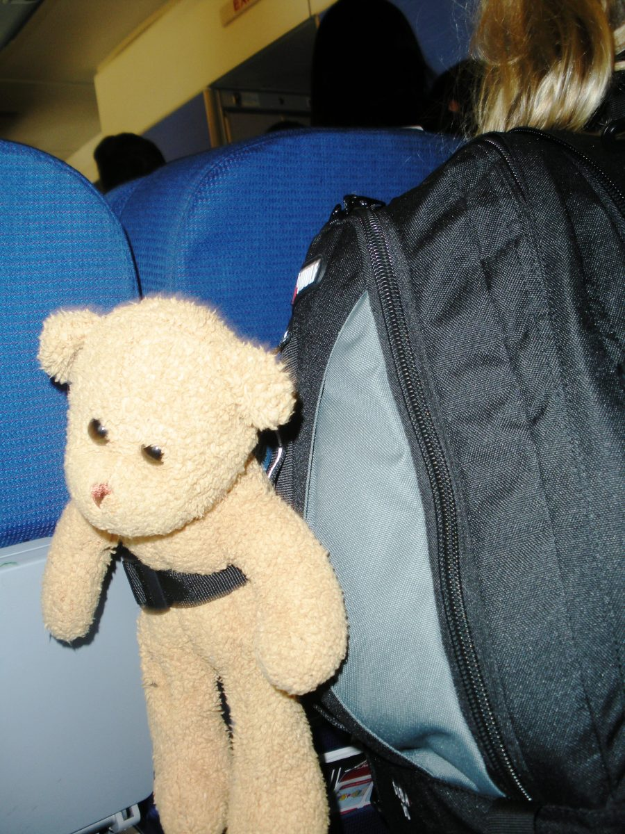 Bring a friend on a plane flight. Choose one that is soft, washable and quiet. A good flight buddy is always quiet. Don't bring a toy that can talk.