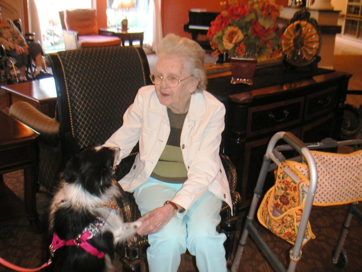 Visiting canine Roxy brings a smile to the resident's faces.