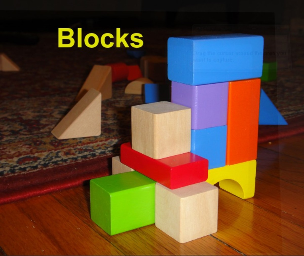 A quality set of wooden blocks is a smart investment and will provide hours of creative fun for children.
