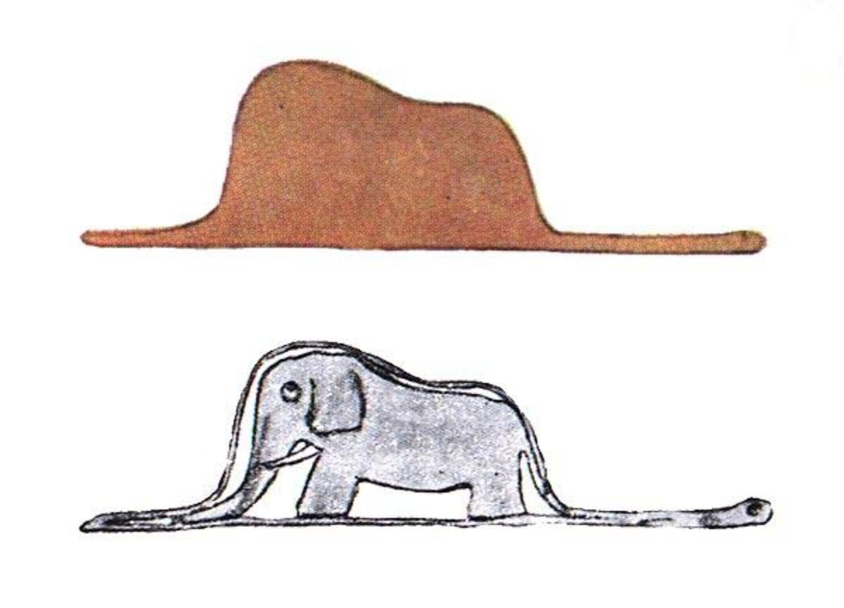 elephant in a boa