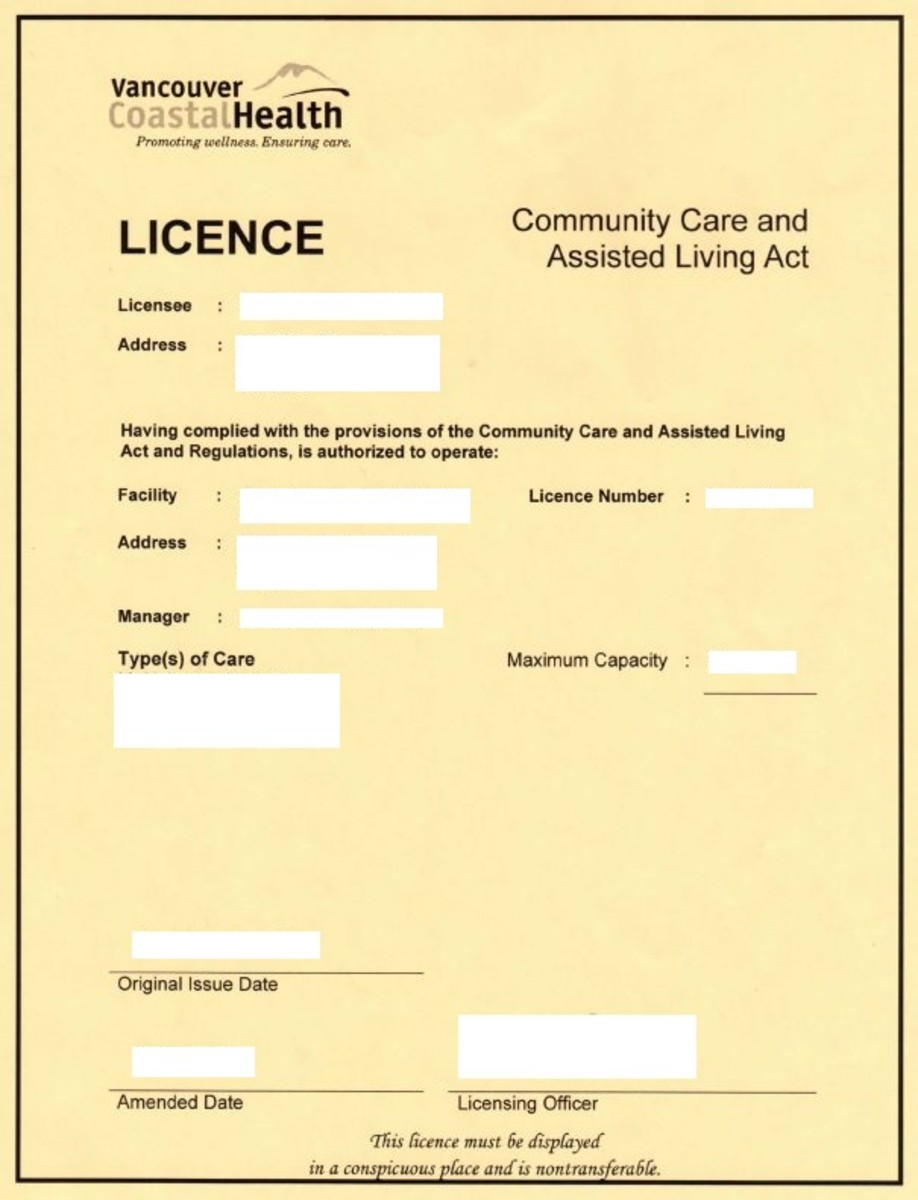 A sample of a daycare business licence.