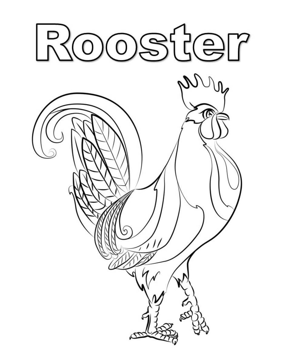 Coloring page with realistic rooster