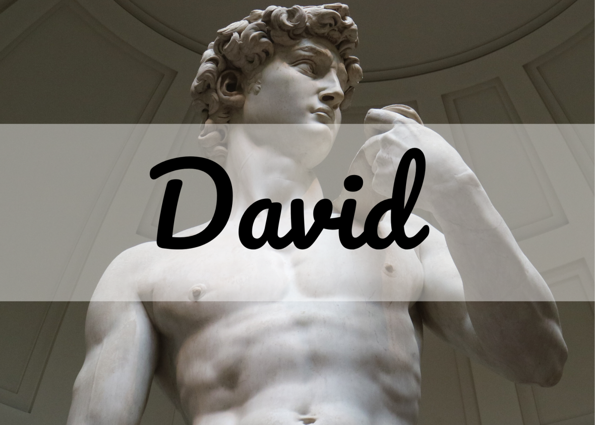 David is a classic name that has been ranked as the most popular boys' name in the United States in the past.