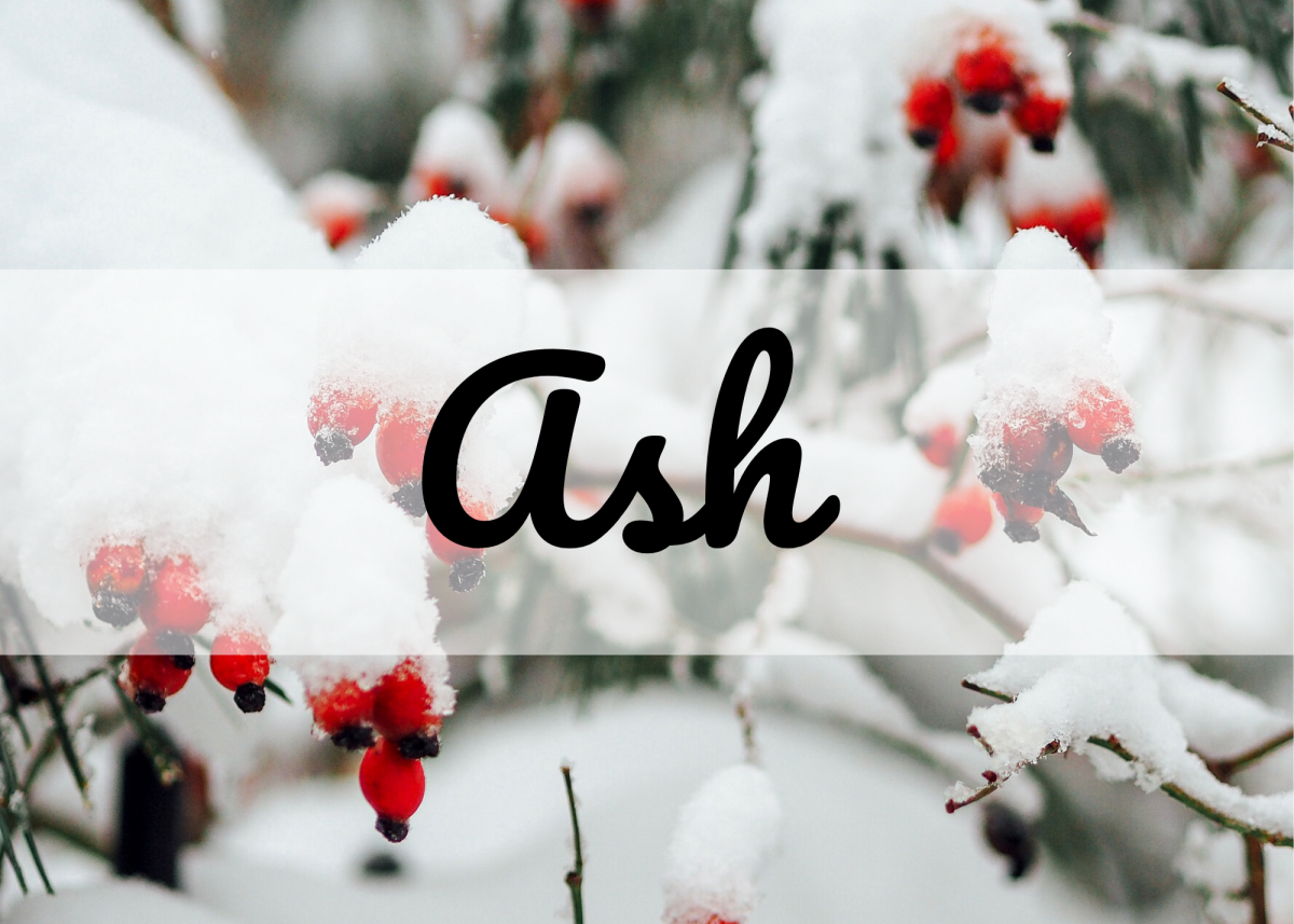 Ash is a standalone name, but it's also a nickname for Asher, Ashton, and Ashley.