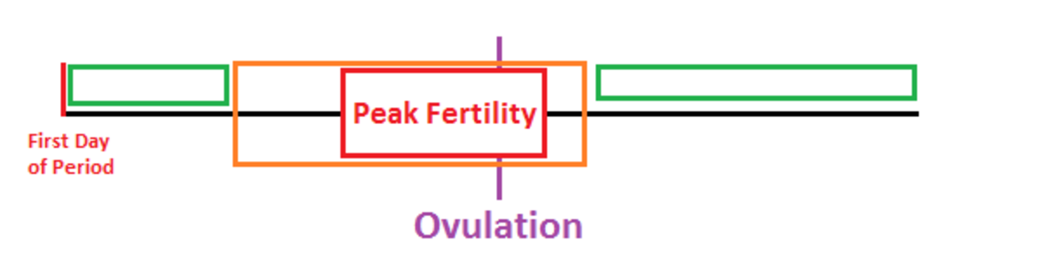 You can see from the chart that there are 2 times of minimum fertility - during and shortly after your period and at the end of your cycle. However this really depends on you KNOWING when you ovulate.