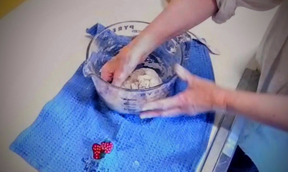 Beginning kneading. An experienced kneader can easily knead this dough right in the bowl, using mostly their knuckles...but if you wish, you may take it out and work it as shown in the video.