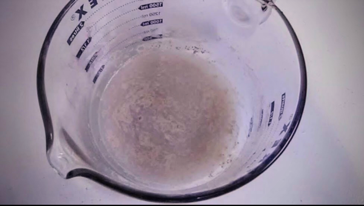Yeast, sugar and water have been put together. The yeast is activating, becoming soft and frothy.