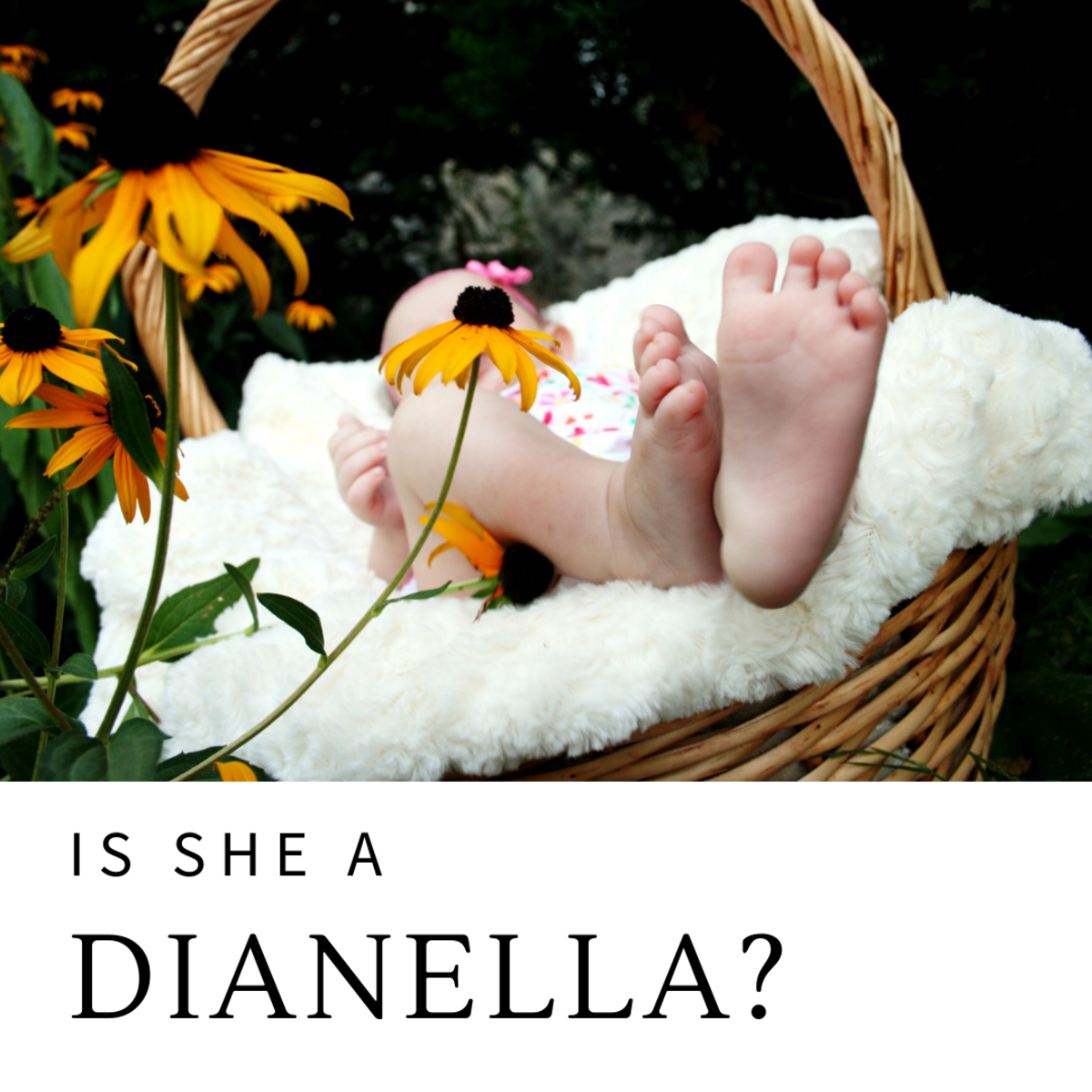Is she a Dianella?