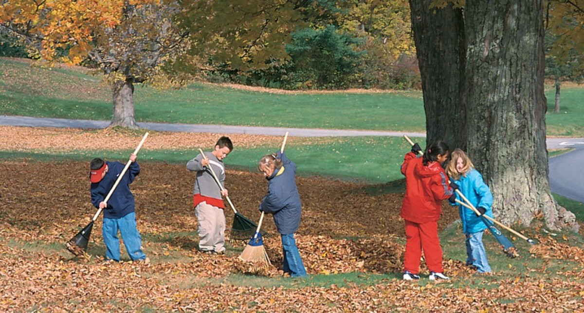Kids work as a team raking fall leaves