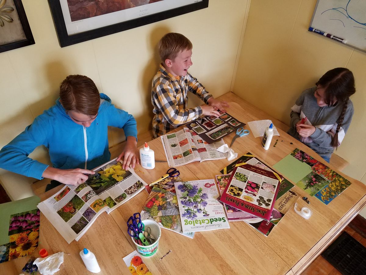 Use old plant and seed catalogues or magazines to make a garden collage.