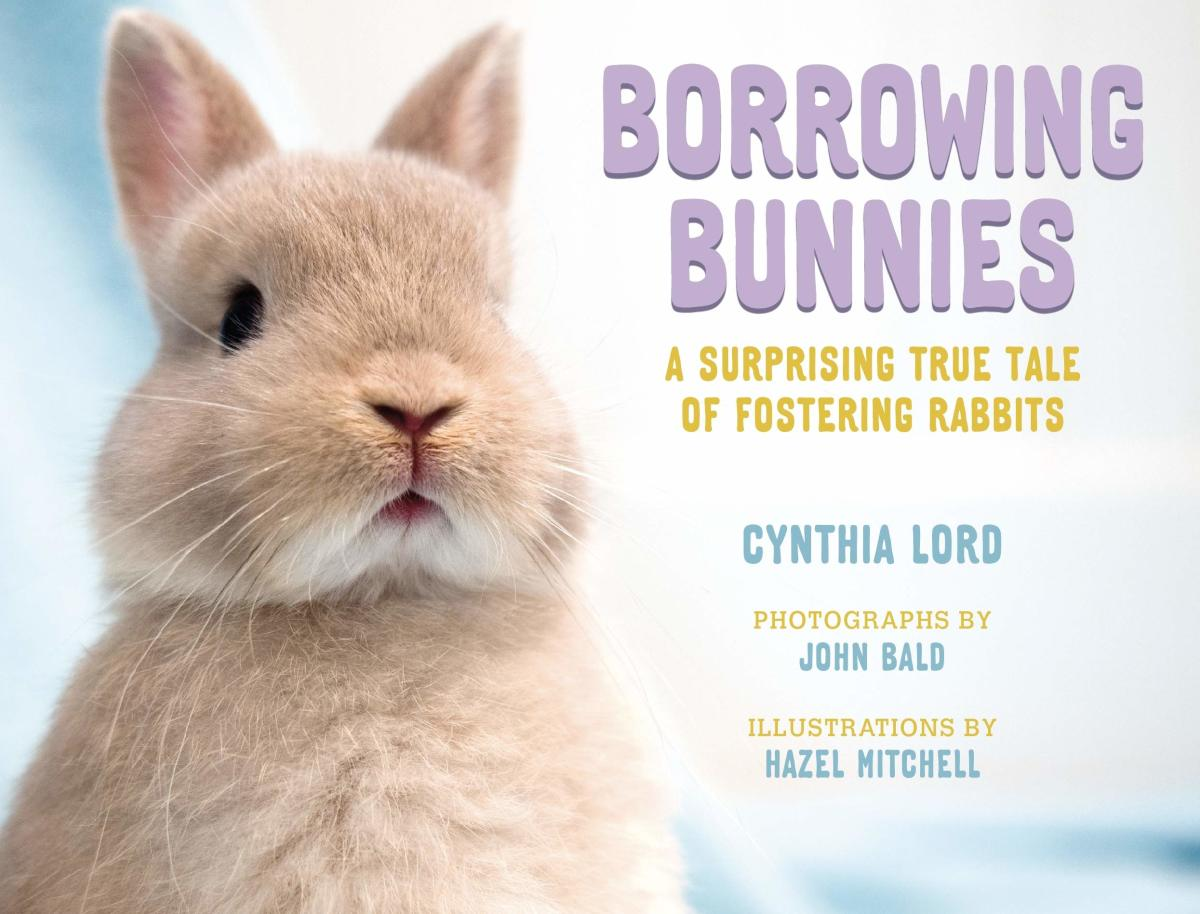 Borrowing Bunnies by Cynthia Lord