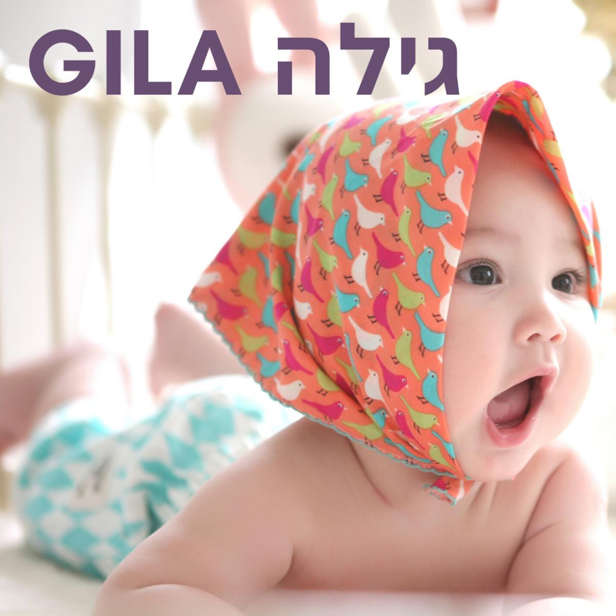 Baby Gila