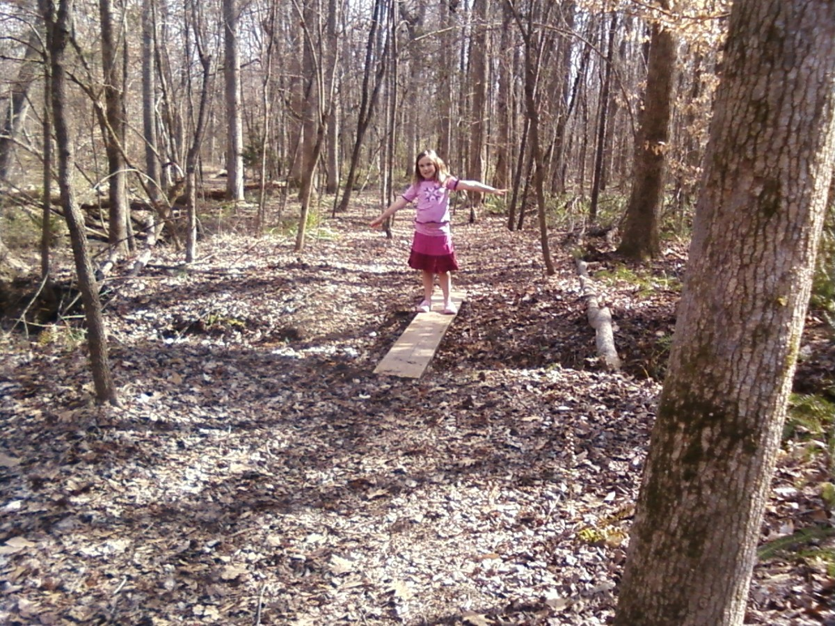Neighborhood nature trail