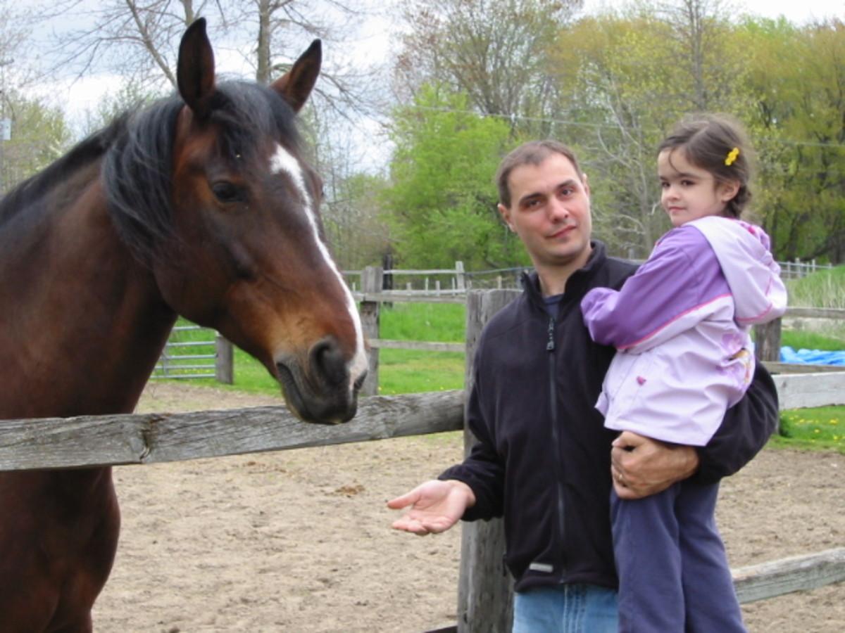 Visiting a horse farm.