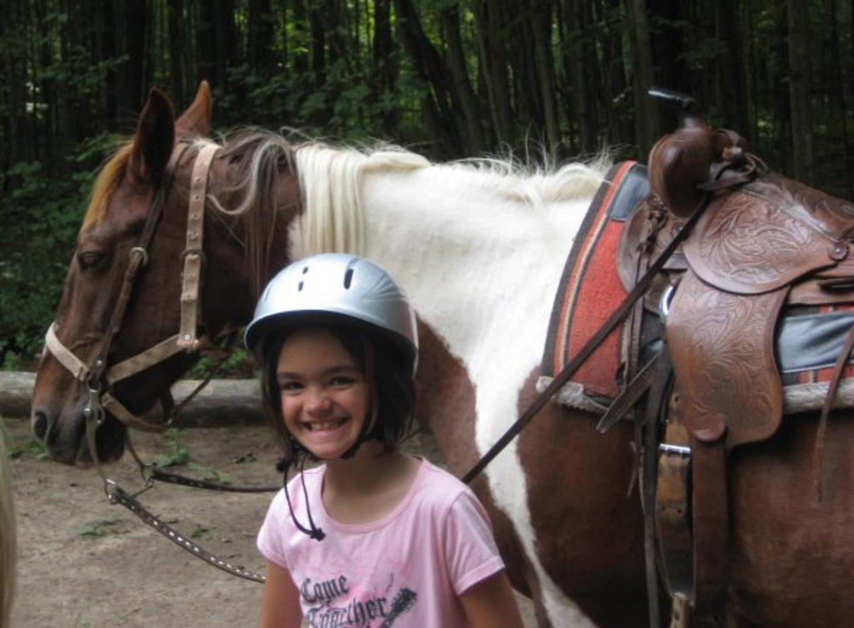 Little girls love horses!