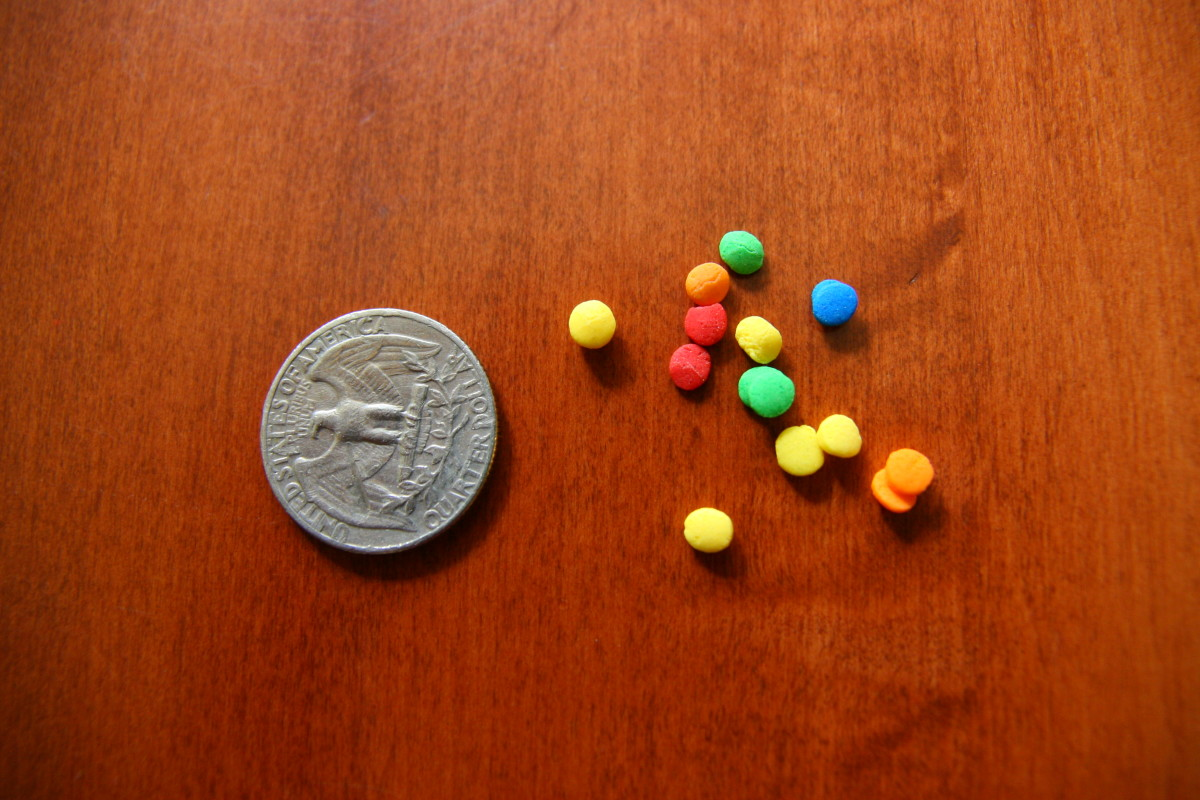 """The baby is approximately 1/4"""" in length, or about the size of the confetti sprinkles seen in this picture. A quarter is used for size reference."""