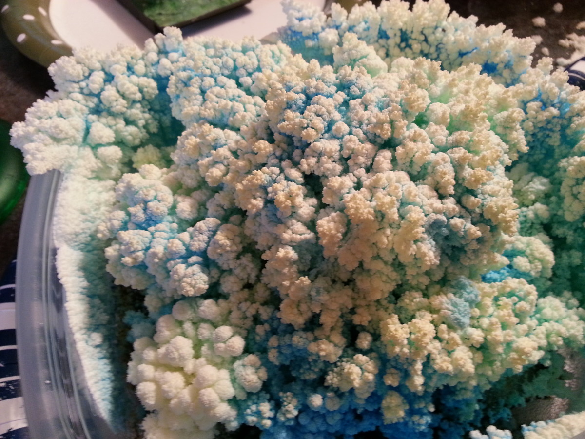 Your crystal garden will start to look like cauliflower if you don't feed it for a several days.  It's still pretty.
