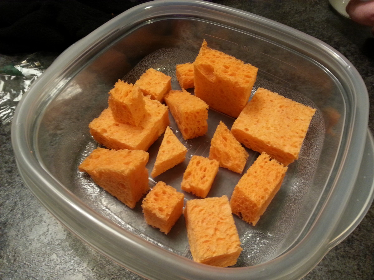 Sponges arranged in the plastic container.